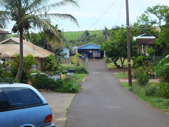 Rainbow Surf Hostel: View down the end of the road