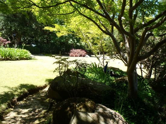 By entrance picture of shizen japanese garden fresno for Japanese garden entrance