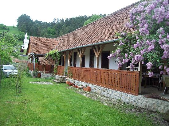 Black Stork Guesthouse/Felekete Golya Pension