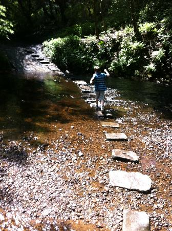 , UK: Stepping stones
