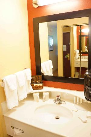 Courtyard by Marriott Traverse City: Bathroom Vanity Area (Separate from Toilet/Shower area).