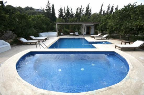 Olive Farm Of Datca Guesthouse: Olive Farm Guesthouse - Data Butik Otel - Yzme Havuzu