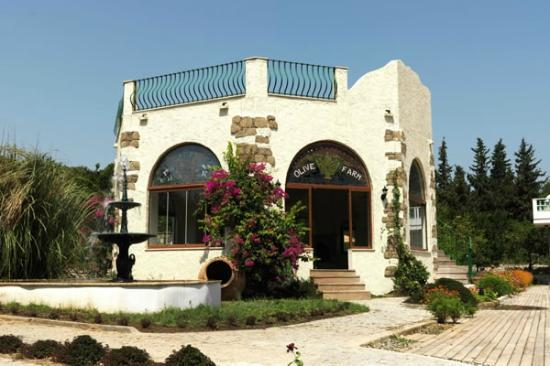 Olive Farm Of Datca Guesthouse: Olive Farm Guesthouse - Data Butik Otel