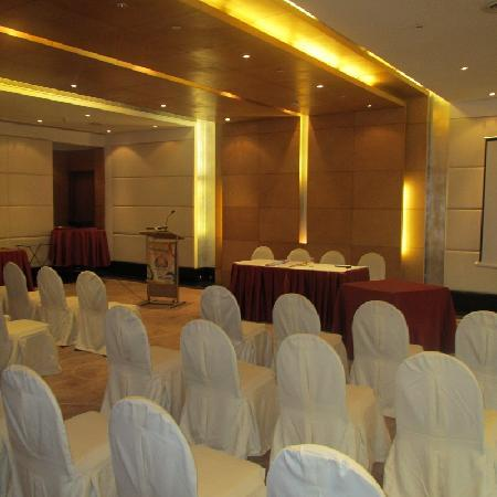 Clarion Collection, Qutab New Delhi: Ball Room
