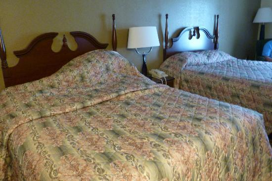 Country Inn & Suites, Knoxville Airport: Double Room