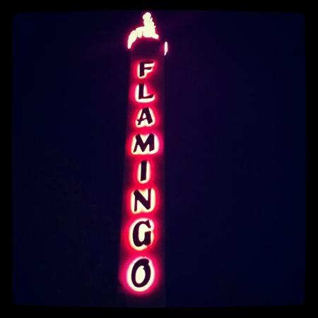 Flamingo Conference Resort & Spa: neon sign...love it