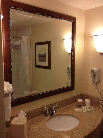 Hilton Garden Inn Atlanta East: Lavabo