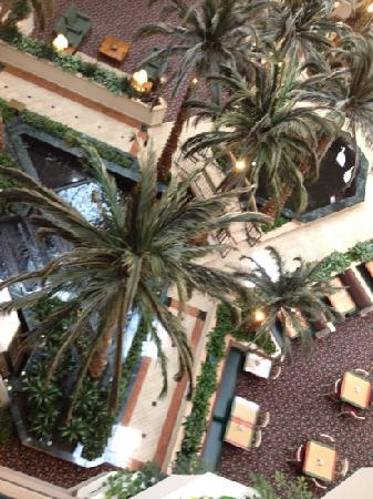 Embassy Suites Houston - Near the Galleria: The view from the hallway outside my room