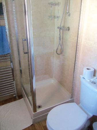 Camberley Guest House: rm 3 shower room