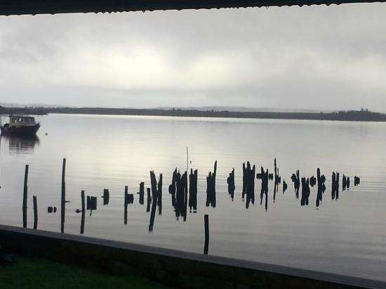 Risby Cove: Overlooking the harbour on a dreary morning