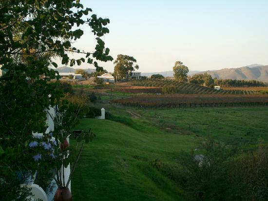 Rosendal Winery & Wellness Retreat: View from restaurant