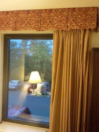 Quality Inn &amp; Suites Elk Grove Village: View from room