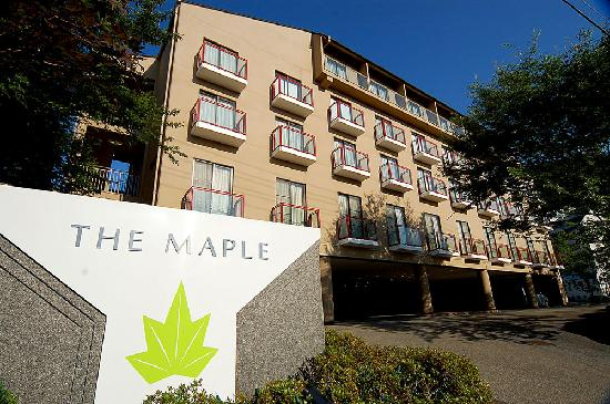‪The Maple‬