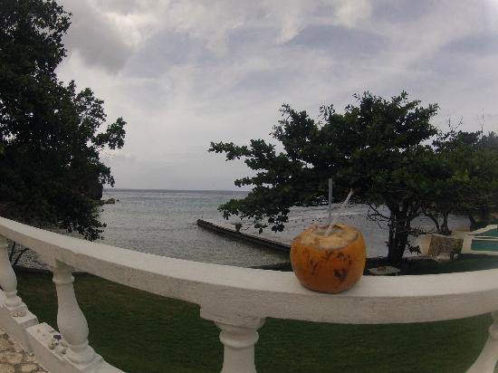 The Resort at Wilks Bay: Jelly coconut with rum!