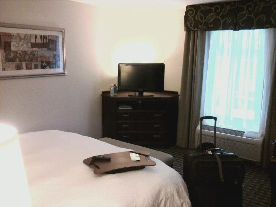 Hampton Inn &amp; Suites Cleveland-Mentor: Flat Screen Television with Cable