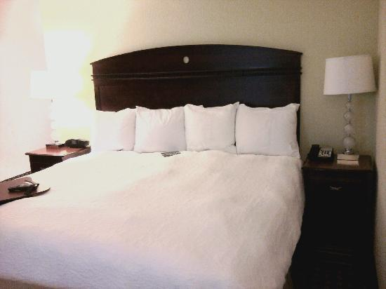Hampton Inn &amp; Suites Cleveland-Mentor: King Bed