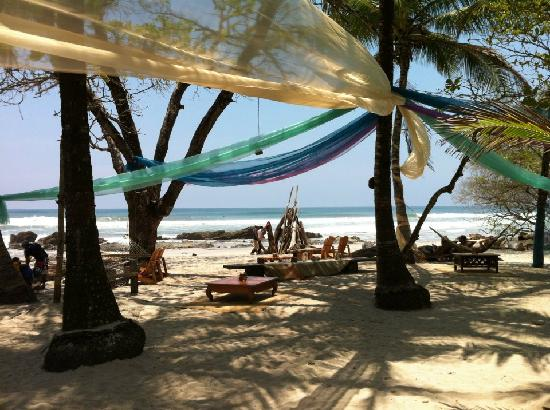 Hotel Tropico Latino: Beachfront social hammock area