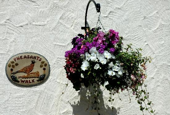 Nanplough Country House & Cottages: Courtyard Flowers