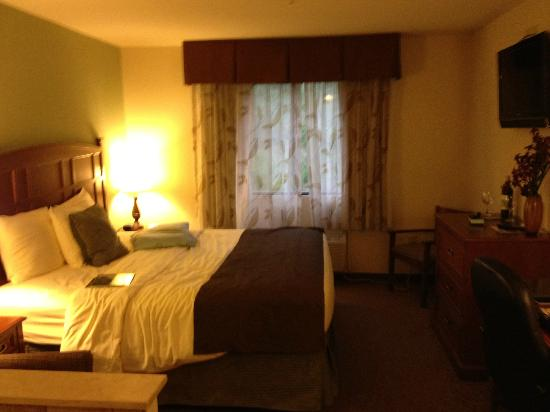 Brookstone Lodge: Room