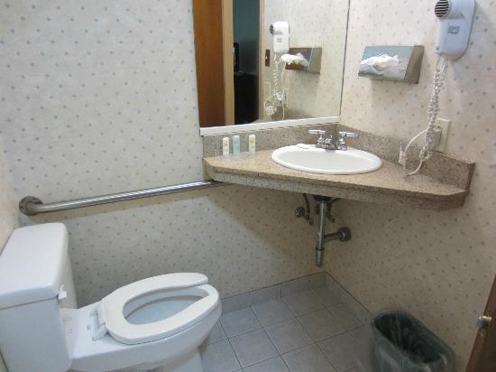 Quality Inn Schenectady: Bathroom