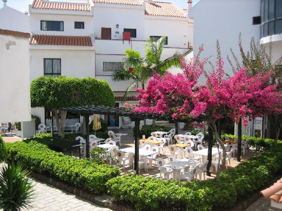 Photo of Apartamentos Hg Cristian Sur Los Cristianos