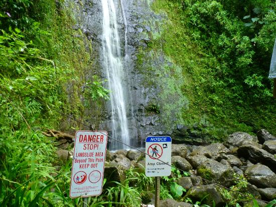University of Hawaii at  Manoa Campus: Manoa falls