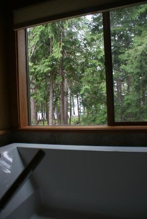 Savary Island, Canada: View out of the tub