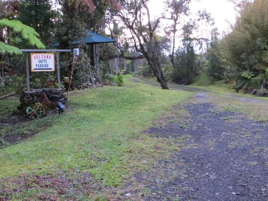 Volcano Fern Forest Retreat: Entrance