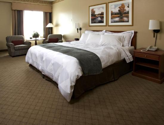 Radisson Paper Valley Hotel: Guest Room King Bed
