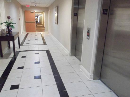 Hampton Inn Suites Valdosta Conference Center: Elevators