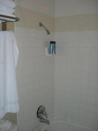 Good Nite Inn Rohnert Park: Very short shower head