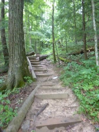 "Natural Bridge State Resort Cottages: The ""easy"" trail"