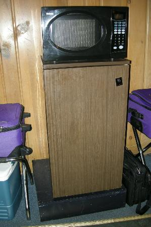 Water's Edge Motel: The room came with a small refrigerator (we cleaned out the crumbs) and a microwave that smelled