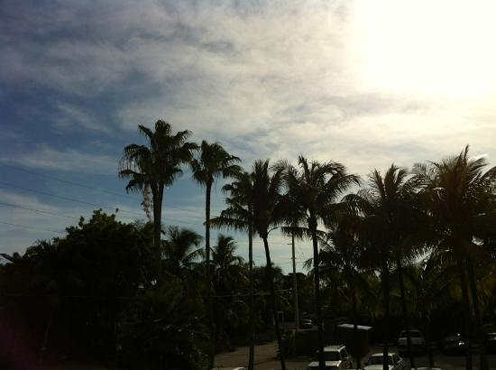 Banana Bay Resort - Key West: View over the parking lot from our room