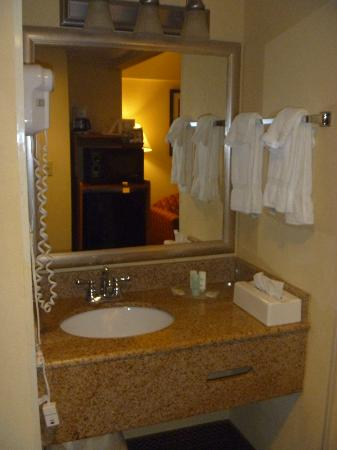 Comfort Suites Allentown: sink area