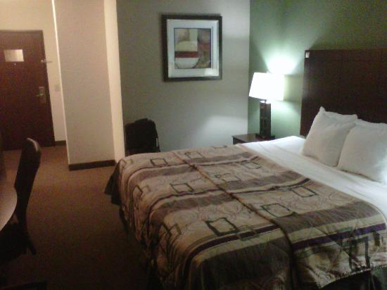 Sleep Inn &amp; Suites Intercontinental Airport East: Habitacion cmoda, grande. Buena TV, Free Internet.