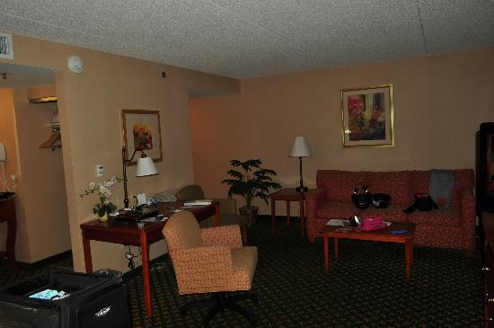 Hampton Inn & Suites Williamsburg-Central: sofa bed and desk,king suite