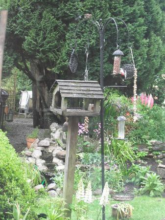 Pennycroft Guest House: The garden is a credit to them- lovely view over a stunning breakfast