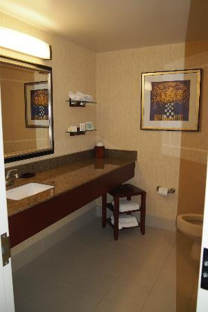 Courtyard by Marriott Detroit Downtown: bathroom