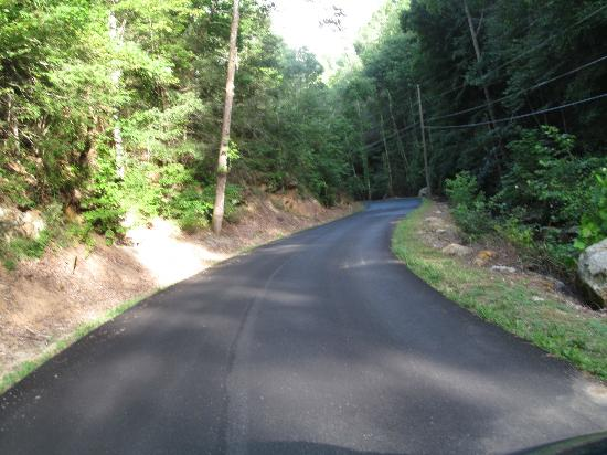 Bluff Mountain Cabin Rentals: road towards cabins