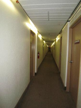 Long House Alaskan Hotel: Hallways are not well lit and the carpet is filthy