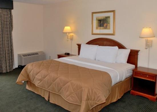 Clarion Inn Downtown Tucson: Guest Room