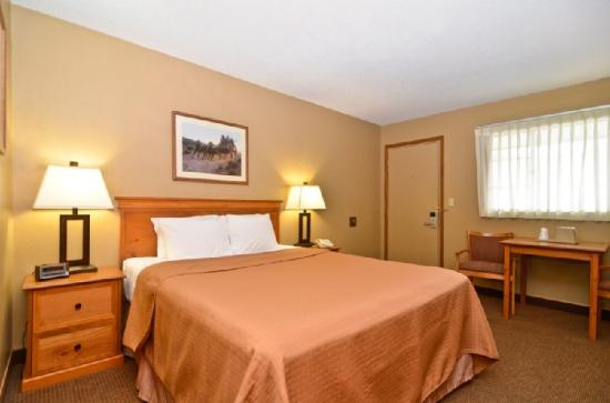 BEST WESTERN Hickok House: Guest Room