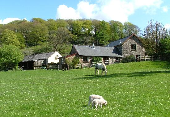 Riscombe Farm Holiday Cottages (Minehead, England ...