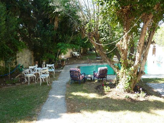 St. Thomas Bed and Breakfast: Pool and garden