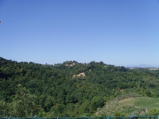 Il Torrino: View from front of the villa