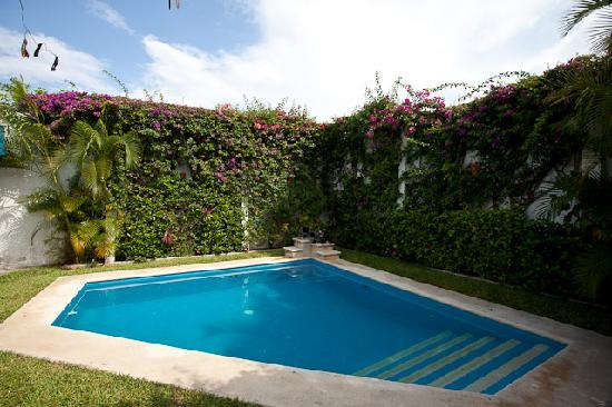 Casa Quetzal: Pool