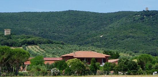 Agriturismo Fusini
