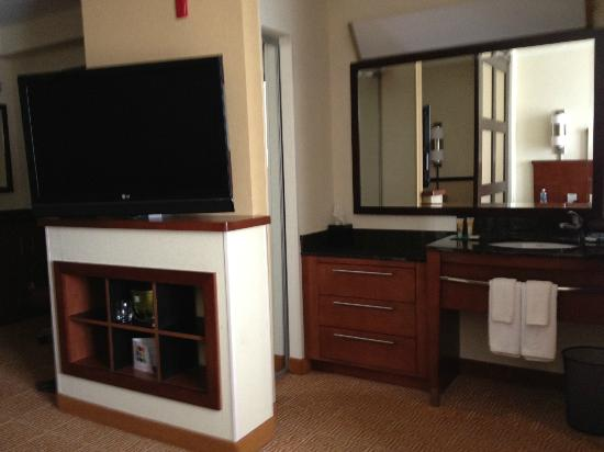 Hyatt Place Jacksonville Airport: TV and bathroom sink/vanity area