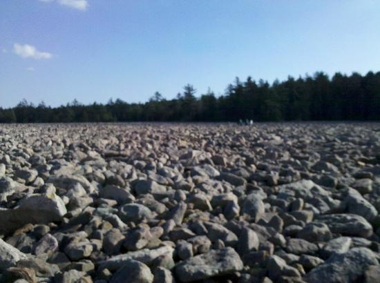 Pocono Mountains Region, : Boulder Field